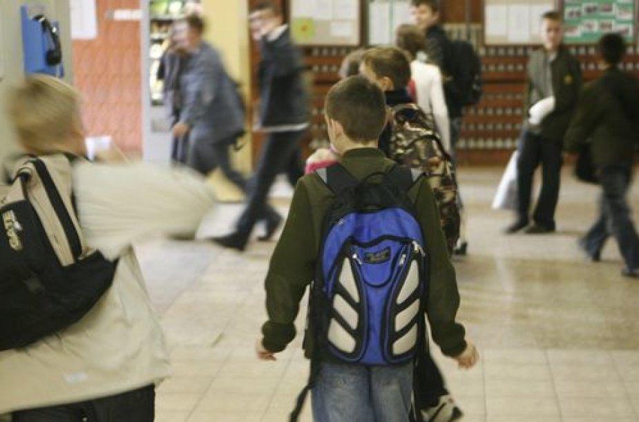 Tėvų prašymu, mokykla į incidento tyrimą nesikiša.