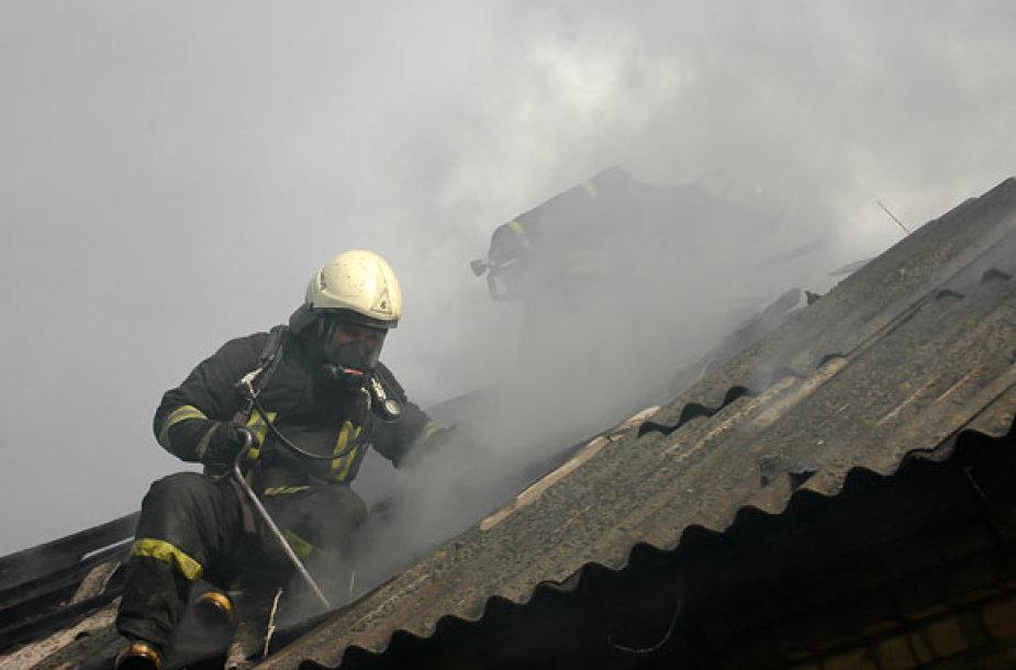 Ugniagesys ant stogo