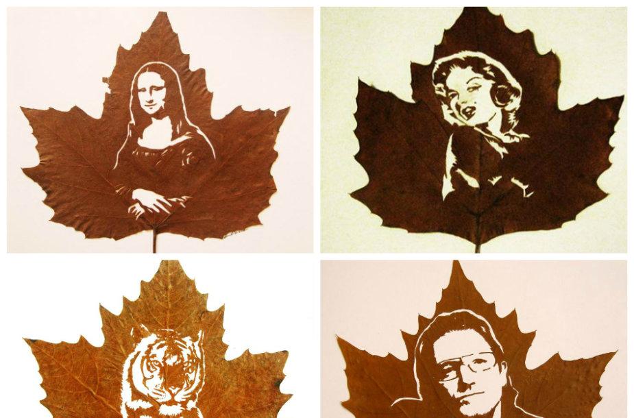 Omido Asadi darbai iš nukritusių medžių lapų