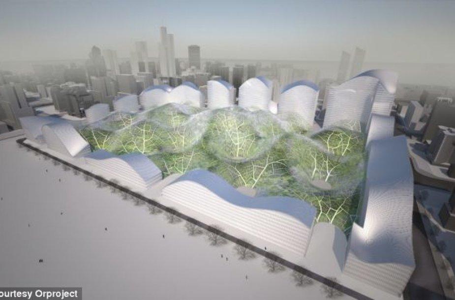 Kinijos bendrovės kupolo prototipas