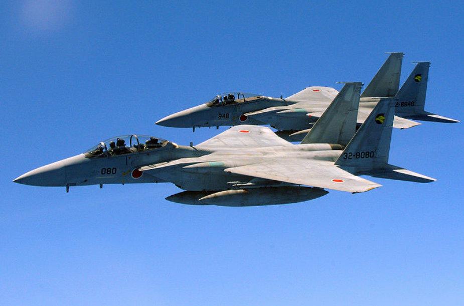 "Japonijos naikintuvai ""Mitsubishi F-15 Eagle"""