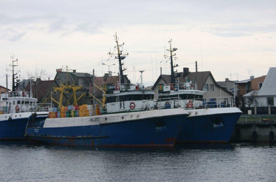 Žvejybiniai laivai stovi įkalinti uostelyje.