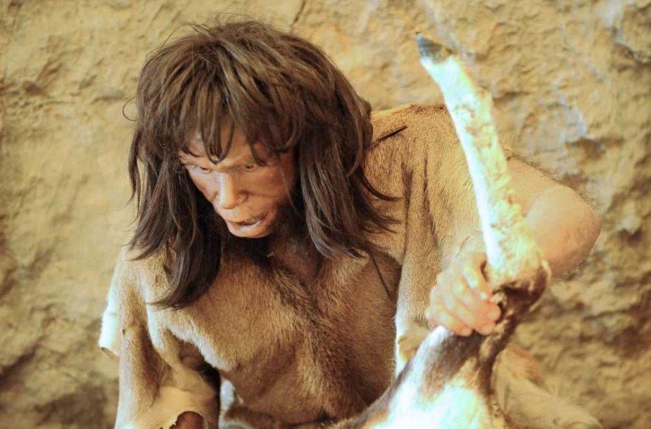 Neandertalietis