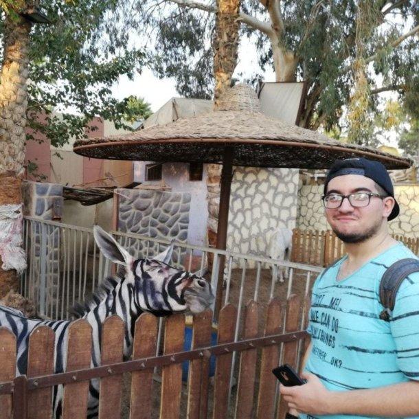 Nuotrauka iš Egipto zoologijos sodo