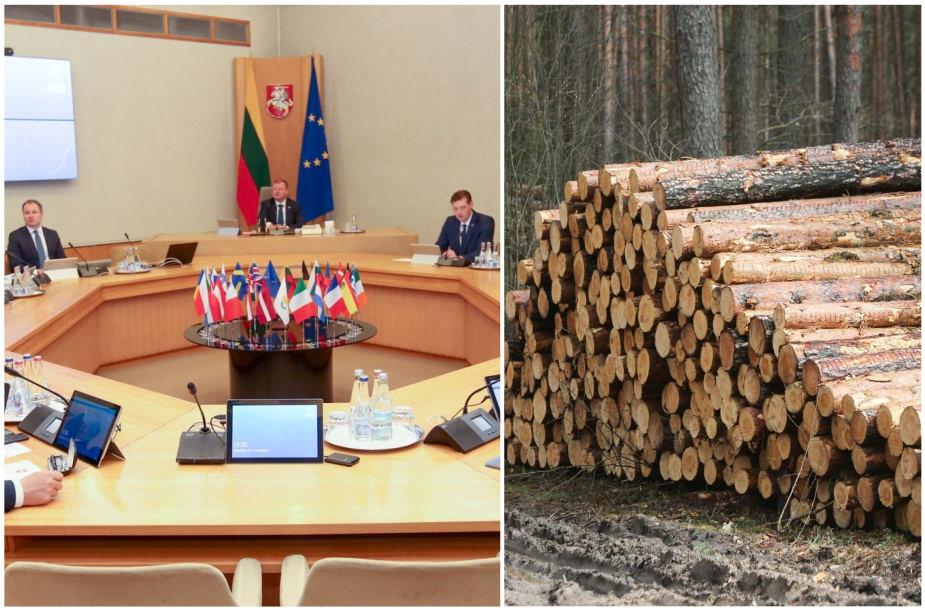 Vyriausybės leido atpiginti medieną