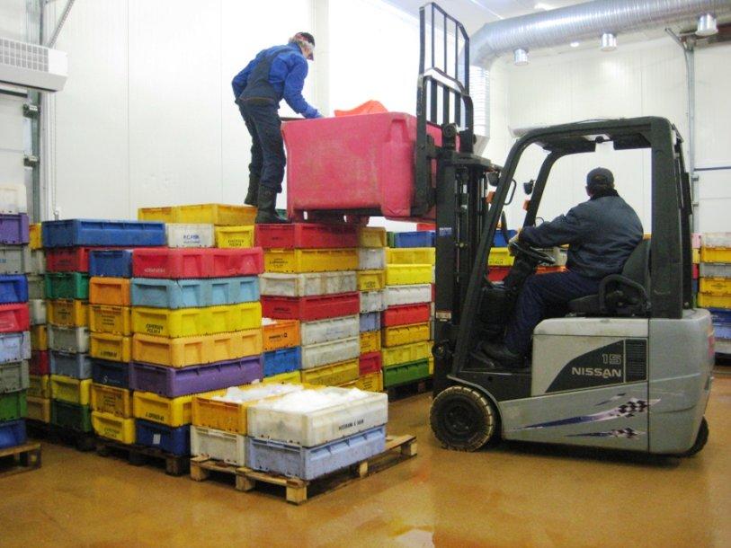 Žuvininkystės produktų aukcionas užverstas dėžėmis menkių. Jų realizuoti taip greitai, kaip pageidauja žvejai, nepavyksta.