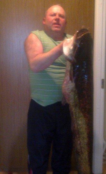 Eugenijaus šamas, sužvejotas Dauguvos upėje (18 kg)