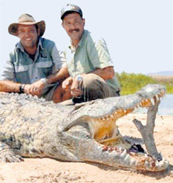 Crocodilas