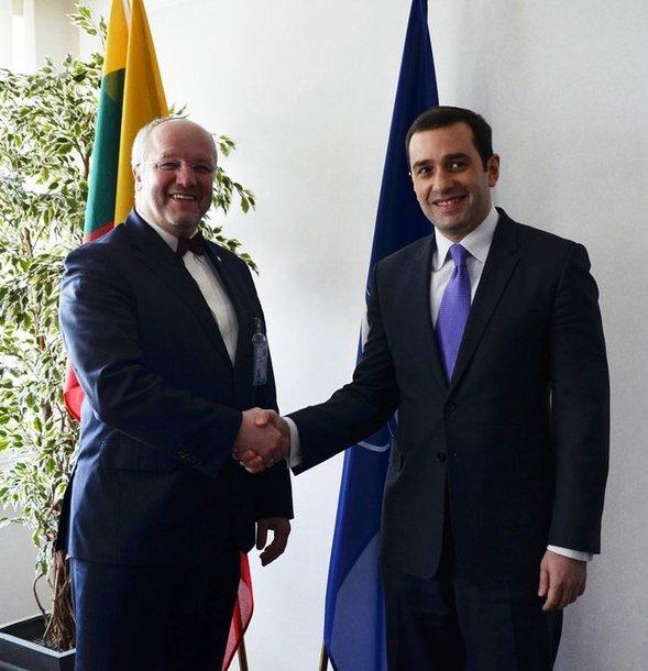 Juozas Olekas su Gruzijos gynybos ministru Irakli Alasania