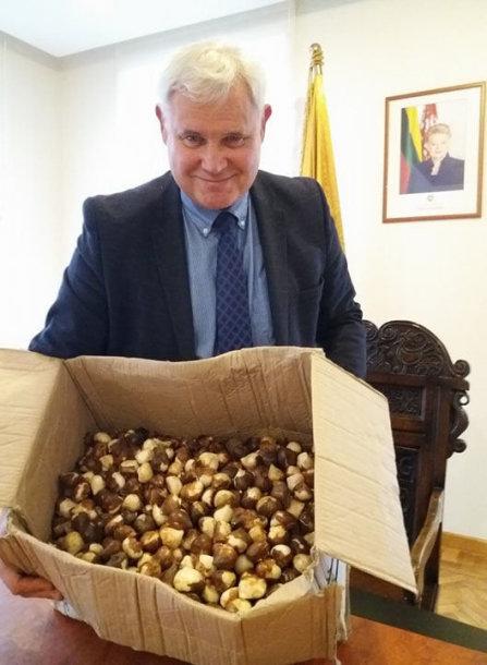 Vytautas Grubliauskas rankose laiko dovaną – tulpių svogūnėlius.