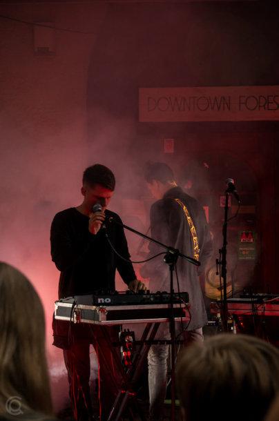 "Solo Ansamblio koncertas ""Dowtown Forest"""