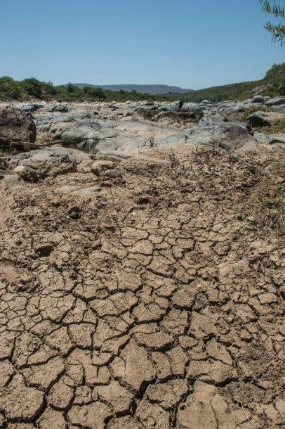 Sausra Pietų Afrikos Respublikoje
