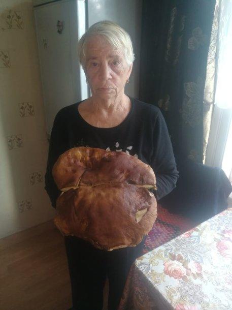 Plungės rajone rastas, kaip teigiama, 4 kilogramus sveriantis baravykas.